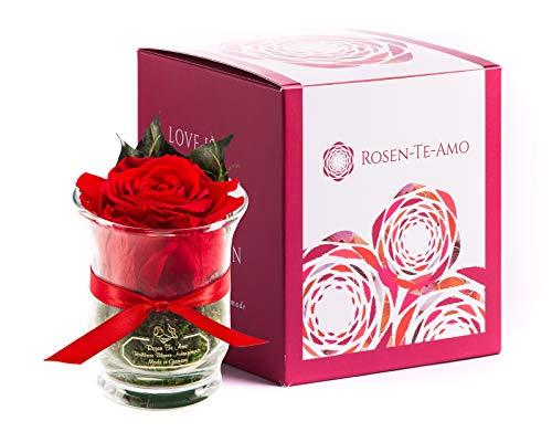 Rosen-Te-Amo, duftende Premium konservierte ewige...
