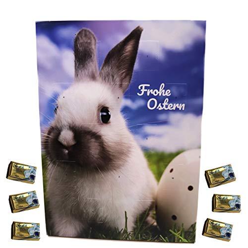 Osterkalender Motiv Osterhase Schokolade 1 x 60 g...