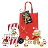 STEINBECK Nikolaus Geschenktüte Schokolade Plüsch Bär Set Adventskalender Wichtel Stiefel Befüllung Weihnachten
