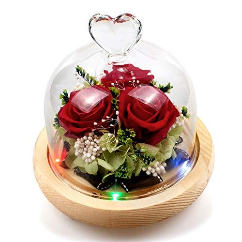 StillCool Ewige Rose, handgemachte frische Blume...