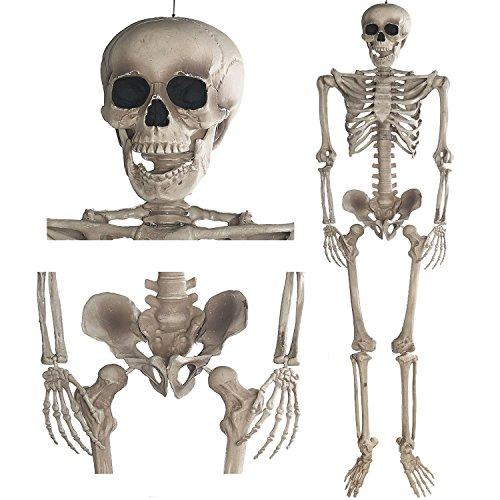 GOODS+GADGETS Deko Skelett 160 cm - Party &...