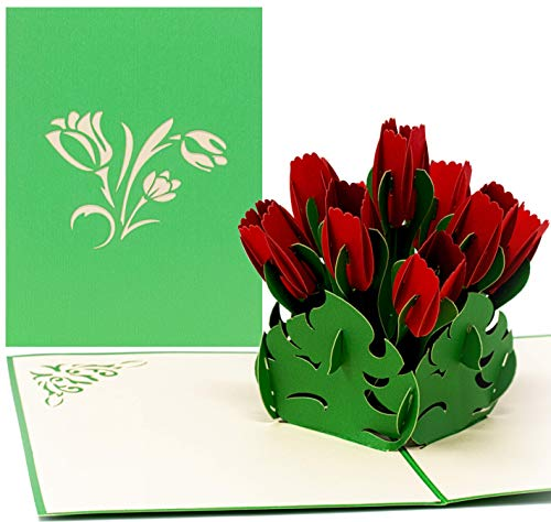 LIMAH® Pop Up 3D Geburtstagskarte,...