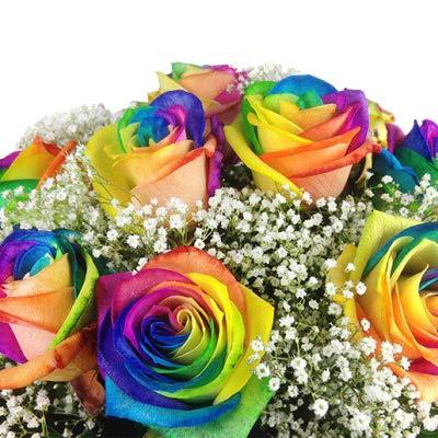 Bunter Blumenstrauß mit 10 Regenbogenrosen -...