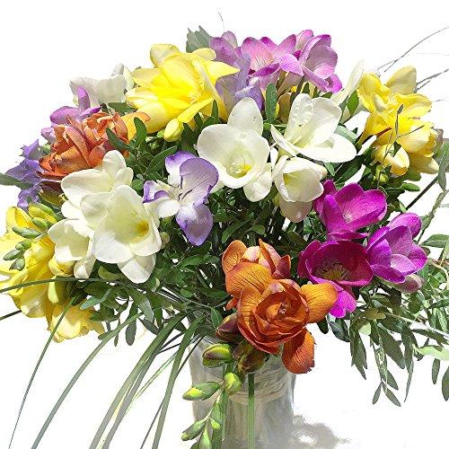 Bunte Freesien - Blumenstrauß mit farbenfrohen...